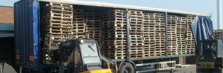 Excess Pallets